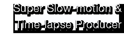 Defisher Logo Subtext